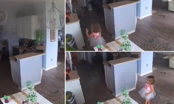 Viral video about saves home    Four-year-old avoids major tragedy;  Video goes viral