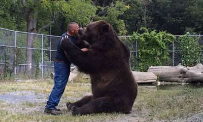 odd-news-mass-bears-love-to-his-father