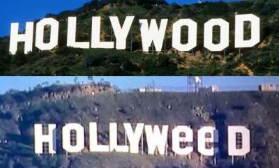 hollywood-hollywood-board-change-in-to-hollyweed
