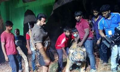 latest-news-mohanlal-faught-with-a-dupe-tiger