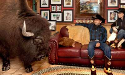 environment-couple-has-house-trained-buffalo-named-wild-thing-as-a-pet-hes-really-a-gentleman