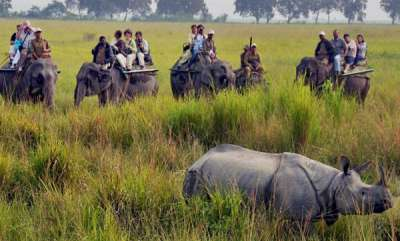 latest-news-kaziranga-report-gets-bbc-banned-from-tiger-reserves-for-5-years
