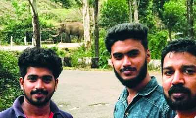 latest-news-elephant