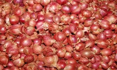 life-style-onion-juice-remedy-for-gray-hair