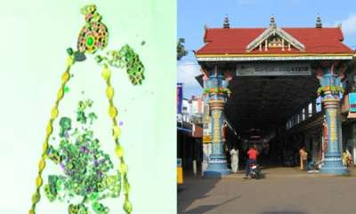 latest-news-ampalappuzha-temple-gold-ornaments-found