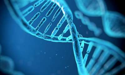 life-style-genes-responsible-for-obesity-identified