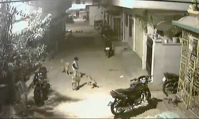 latest-news-hyderabad-boy-stands-up-to-four-stray-dogs