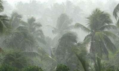 latest-news-rain