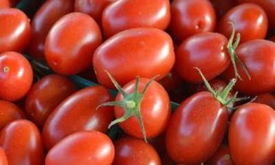 business-news-tomato-price-hikes-steeply