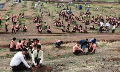 environment-mp-plants-6-crore-trees-in-12-hours-in-attempt-to-fulfil-paris-agreement-promise-eyes-guinness-world-record