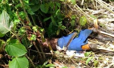 latest-news-tribal-women-raped-by-bsf-victims-friend-found-dead-in-mizorzm