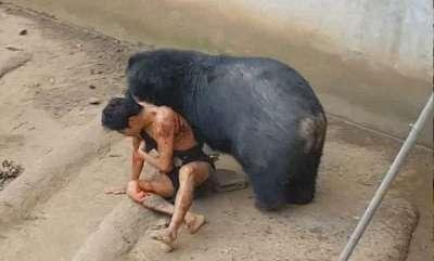 odd-news-bear-attack-zoo-keeper