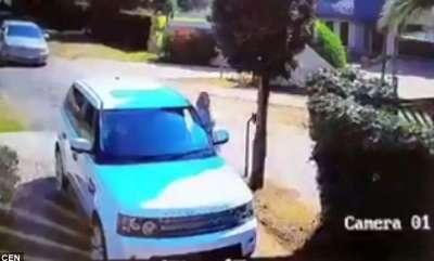 odd-news-vigilant-couple-escaped-from-attack