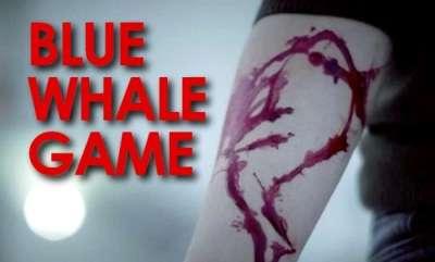 latest-news-blue-whalegame