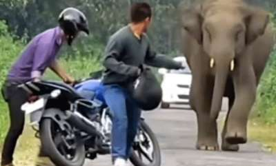 auto-royal-enfield-fans-reply-to-hard-hitting-bajaj-dominar-commercial-is-hilarious