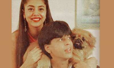 latest-news-gauri-khan-posted-an-ancient-photo-of-shah-rukh-khan-on-instagram