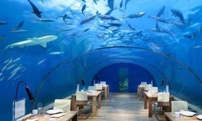 odd-news-restaurant-under-sea-in-maldives