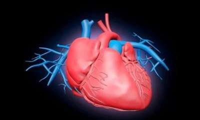 opinion-world-heart-day