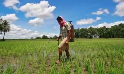 india-maharashtra-to-probe-18-farmers-deaths-due-to-toxic-pesticides