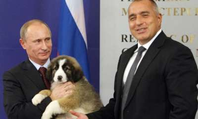 latest-news-putin-gets-a-puppy-for-his-birthday