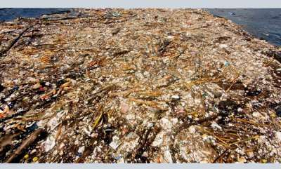 environment-shocking-photo-shows-caribbean-sea-being-choked-to-death-by-human-waste