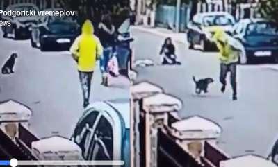 odd-news-viral-video