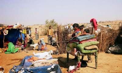 latest-news-ptis-report-on-gujarat-tribes