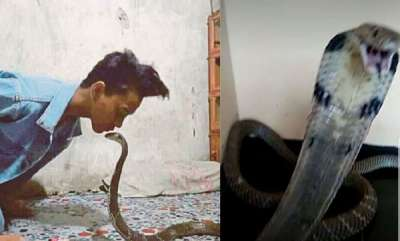 environment-boy-14-dies-after-being-bitten-by-his-venomous-pet-cobra-and-begging-for-help-from-friends-on-whatsapp
