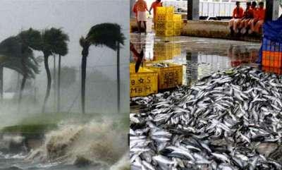 latest-news-okhi-cyclone-issues