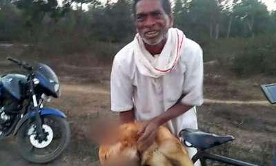 latest-news-chhattisgarh-man-lodges-case-against-son-for-killing-his-dog