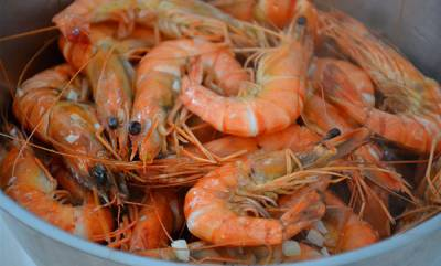 india-hyderabad-seminary-bars-muslims-from-eating-prawns