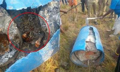 latest-news-dead-body-found-in-kochi