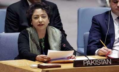 latest-news-pakistan-raises-kashmir-bogey-in-un-security-council