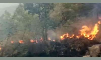 latest-news-over-30-caught-in-huge-forest-fire-in-tamil-nadu-air-force-called-in