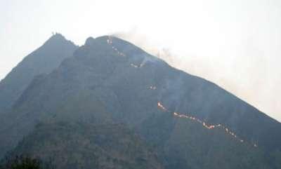 latest-news-fire-broke-out-at-kolukkumala-forest-in-theni