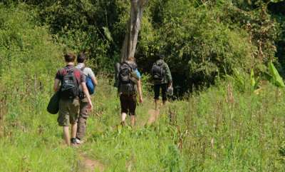 environment-forest-department-banned-trekking-in-forest-area