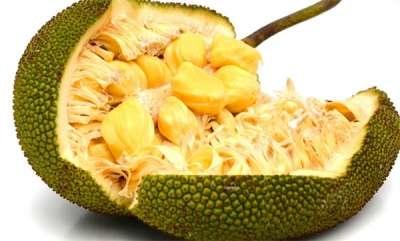 latest-news-jack-fruit
