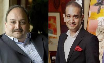 india-pnb-scam-non-bailable-warrant-against-nirav-modi-and-mehul-choksi