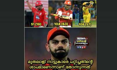 sports-news-social-media-trolls-against-royal-challengers-bangalore