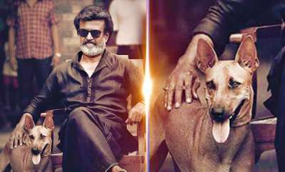 latest-news-rs-2-crore-for-rajinis-dog-mani-in-kaala