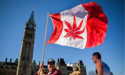latest-news-canada-legalises-recreational-cannabis-use