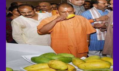 latest-news-yogi-mango-among-700-varieties-at-two-day-uttar-pradesh-festival-on-king-of-fruits