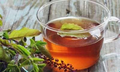 life-style-tulsi-tea