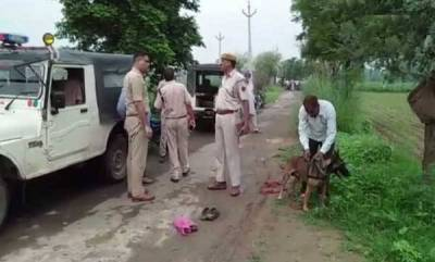 india-man-beaten-to-death-in-alwar-on-suspicion-of-smuggling-cows