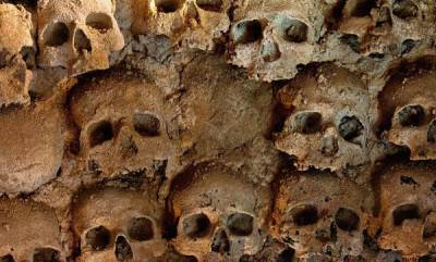world-mexican-prosecutors-find-166-skulls-in-mass-graves