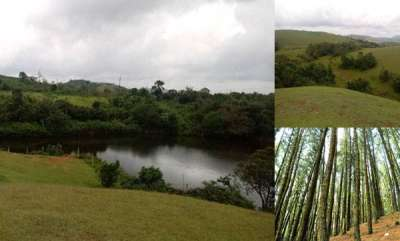 travel-a-getaway-to-nature-exploring-vagamon-after-flood-fury