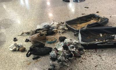 world-police-blew-up-a-suspicious-suitcase-at-rome-airport-only-to-find-coconuts