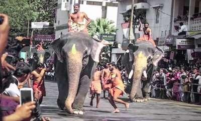 latest-news-supreme-court-in-guruvayur-elephant-race