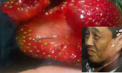 latest-news-50-year-old-woman-arrested-over-australia-strawberry-needle-scare