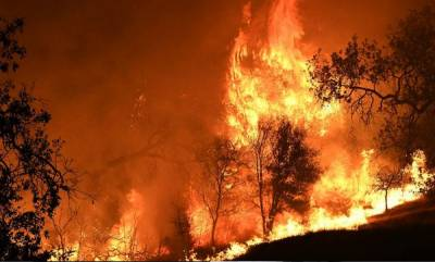 world-death-toll-in-california-wildfire-jumps-to-42